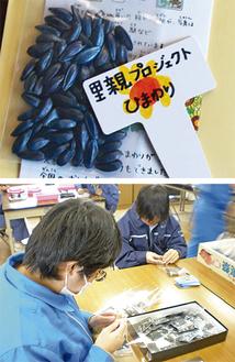 福島のNPO法人が手掛けるプロジェクトの種(写真上)を配布する。種の袋詰めは障がい者が担う(同下)