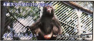 2000年の紙面に掲載された座間公園の猿