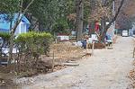 猿の檻があったところには、新たなウサギ小屋が設置される予定だという(市の許可を得て撮影)
