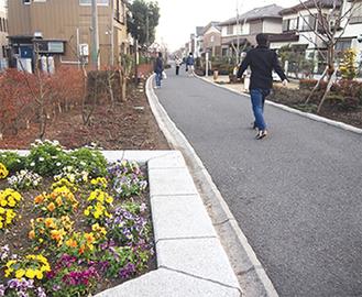 住宅地を抜ける緑道