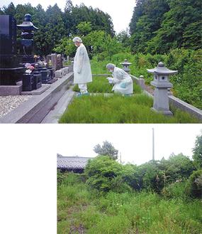 2014年に墓参りをした時の様子(写真上)。放射能の影響で水をかけることが出来ず、供えたのも造花だった。同年の実家周辺の景色(写真右)。家前の道路を隠すほど植物が繁茂した