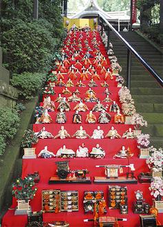 階段に敷き詰められたひな人形=座間神社提供