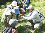 里山の春、自然観察会