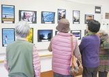 写真・俳句の「総選挙」