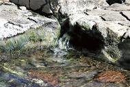 水循環守る取組み評価