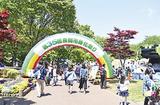 緑化祭り 今年も
