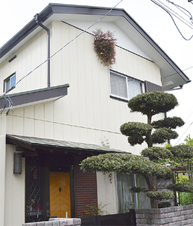 壁で花を咲かせるジャスミン(中央上)=22日撮影