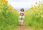 春日井さんの写真「ひまわり畑で追いかけっこ」