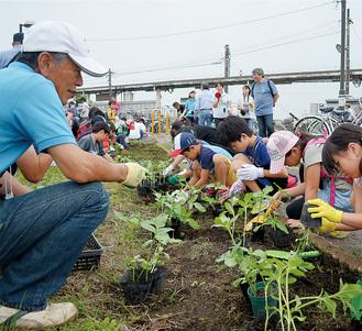 入谷駅前でひまわりを植える子どもたち