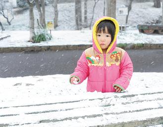 かにが沢公園にて(2/9撮影)
