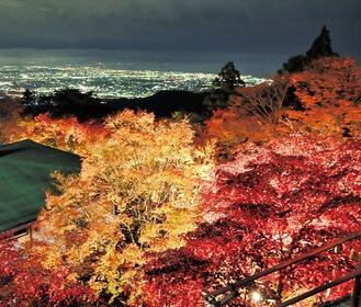 阿夫利神社下社からの眺望(写真は昨年)