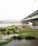 台風19号上陸翌日(10/14)の相模川の様子