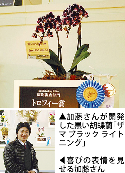 「黒い胡蝶蘭」世界らん展で入賞