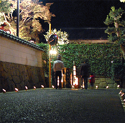 竹灯りで照らす街並み