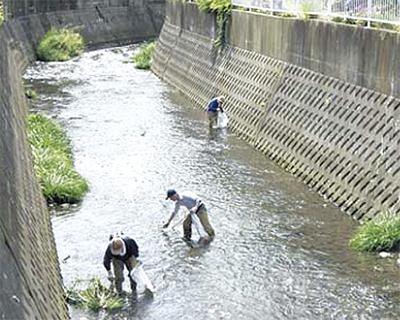 市民の手で川を綺麗に