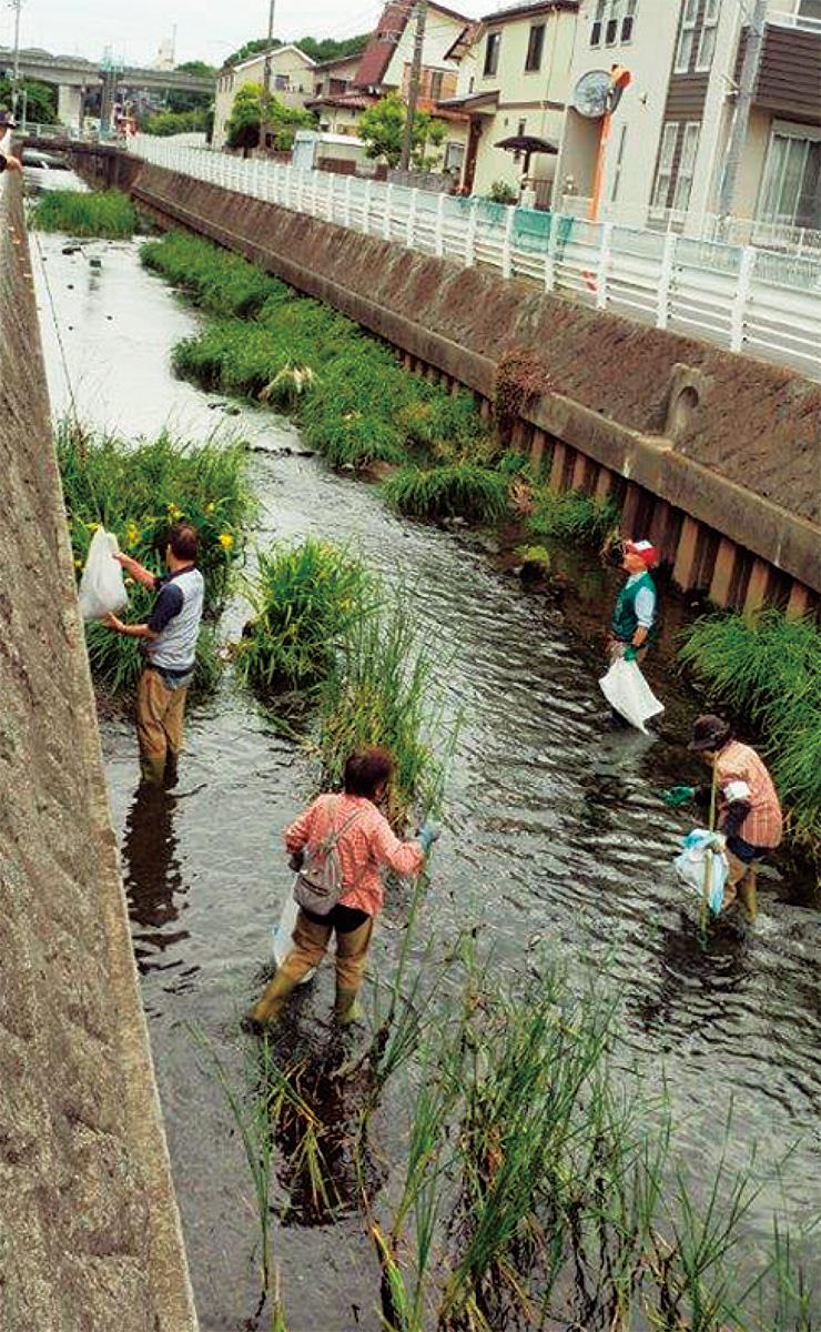 ふるさとの川を守ろう