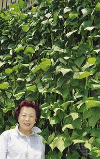 鈴野さんとグリーンカーテン