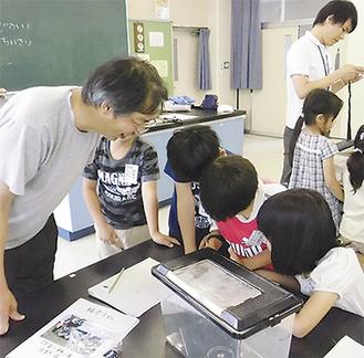 採集したバッタの生態を観察する児童