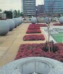 開園当時の厚木中央公園(厚木市提供)