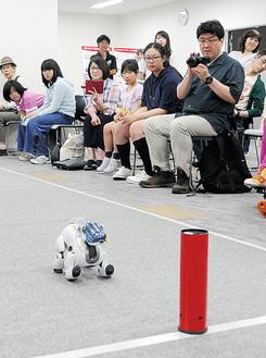 観客の前で力走するロボット