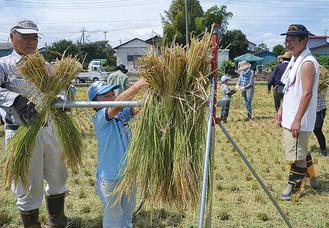 屋外活動の一つ「稲作」ではざがけに挑戦する岩瀬雄斗くん(左から2人目)