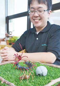 上/みやがせミーヤ館職員の奈良さん作「昆虫シリーズ」。ダンゴムシはとち、クモは茶の実、ムカデはヒマラヤスギでできている