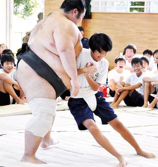 体重をかけて力士に挑む中学生