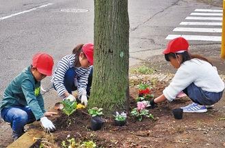 夢中で花を植える児童