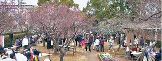 紅白の梅が咲き誇る梅園(昨年の様子)