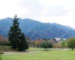 湖畔園地のけやき広場。写真左のもみの木がツリーになる