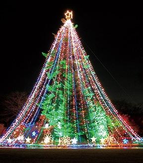 宮ヶ瀬クリスマスのシンボルである高さ約30mの巨大ツリー(昨年)