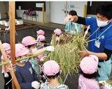 お米で食農教育