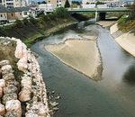 建設企業委員長時に強く取組んだ河床整備