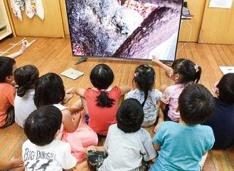 バッタを食べるカエルの映像を見る子どもたち