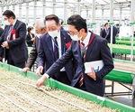 高床式砂栽培を見学する小野澤町長