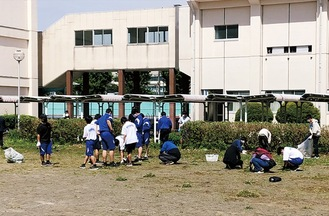 校庭を整備する参加者ら