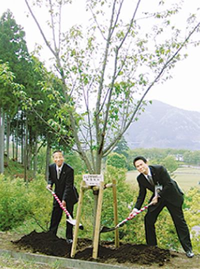 宮ヶ瀬で桜植樹