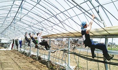 被災イチゴ農家を支援