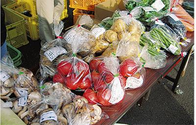 夏野菜収穫フェア