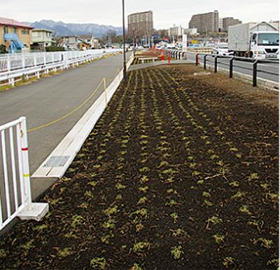 恩曽川沿いの歩道を整備