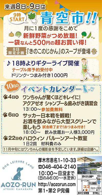 野菜つめ放題が500円!!