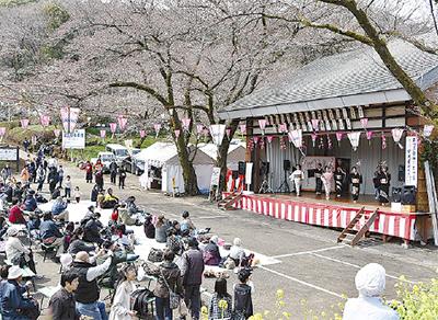 桜まつり開幕