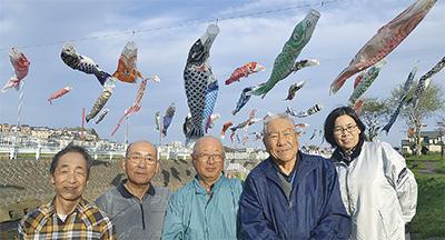 鯉のぼり今年も大漁