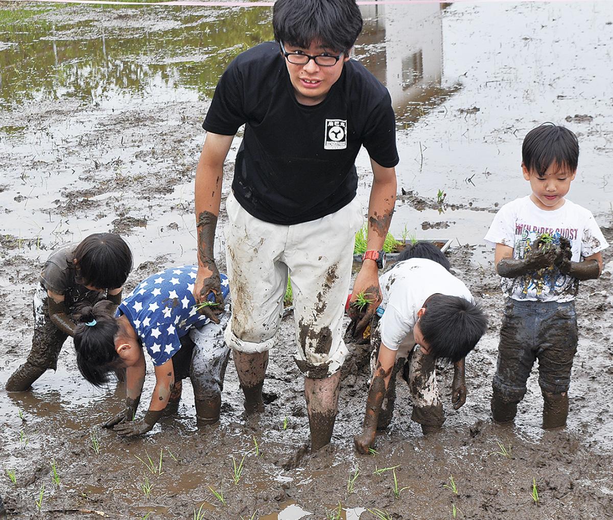 厚木と沖縄繋ぐ『赤米』