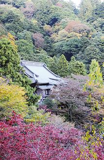 少しずつ紅葉の始まった大山寺周辺/11月12日撮影