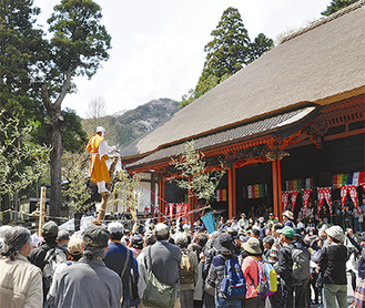 参拝客で溢れる境内で行われた神木のぼり