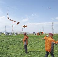 大空にせみ凧が舞う