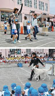 模擬信号(上)と救助犬見学