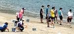 海岸で石を除去する生徒(提供写真)