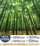竹やぶを素敵な空間に変えます!